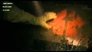 District 9 - The Aliens Arrive [HD]