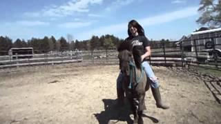 Chells Riding My Pony
