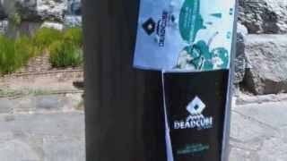 Dead Cube (1st Vid)