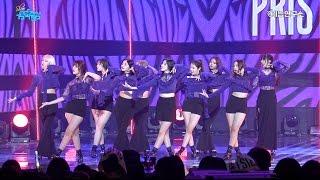 [예능연구소 직캠] 프리스틴 블랙 위도우 @쇼!음악중심_20170520 Black Widow PRISTIN in 4K