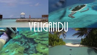 Veligandu - Maldives 2015