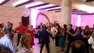 Alexandru Recolciuc live nuntă, restaurant Vivendi. Mirii George si Adina