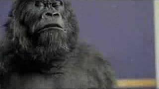 Cadbury's Gorilla vs Cameo 'Word Up' Remix