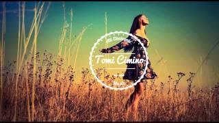 Fabich & Ferdinand Weber - What (Original Mix)