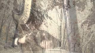 Pavane, Faure - Harp Cover  -  Vanessa Sundstrup, harp