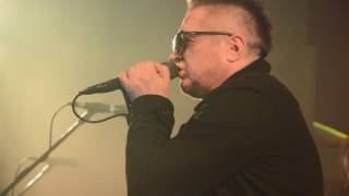 T.Love - Autobusy i tramwaje (live, Ucho Gdynia)