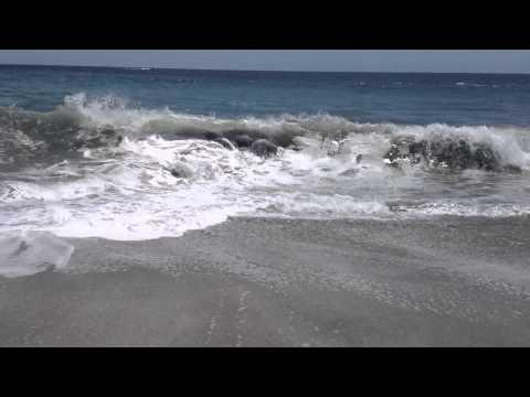 Montezuma Beach -Pura Vida