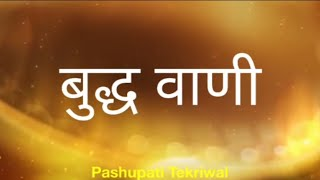Suvichar - Buddha Vani  (Hindi Quotes)  सुविचार - बुद्ध वाणी  (अनमोल वचन - Anmol Vachan)