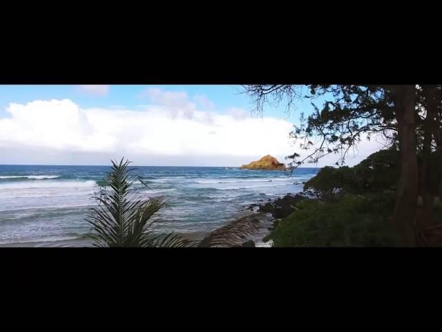 Videoclip oficial de 'Hundred Miles (Gavin Moss Remix)', de YALL, Gabriela Richardson y Gavin Moss.