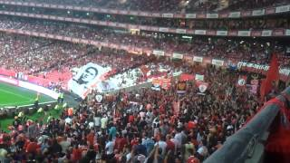 Benfica Supporters NO NAME BOYS