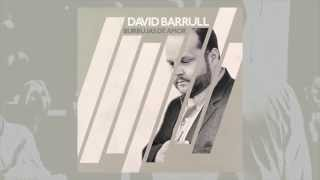 David Barrull - Burbujas de Amor - Lyric Video