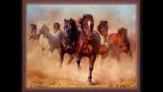 Live Like Horses - Read by Hank Beukema