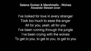 Selena Gomez & Marshmello - Wolves Lyrics ( Alexander Stewart cover )
