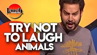 Try Not To Laugh | Animals | Laugh Factory Stand Up Comedy