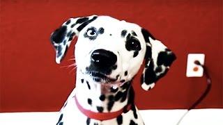 VoicePlay Cruella de Vil | 101 Dalmatians