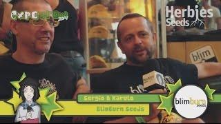 Herbie Interviews BlimBurn Seeds