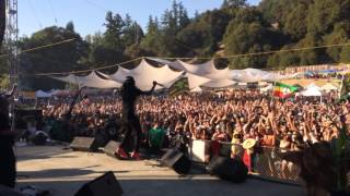 Gyptian - Hold Yuh Live at Reggae on The River 2014