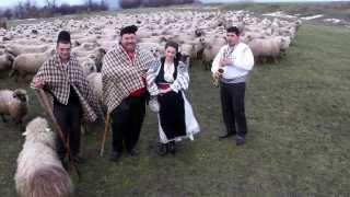 Camelia Grozav - Mai ciobane Niculaie