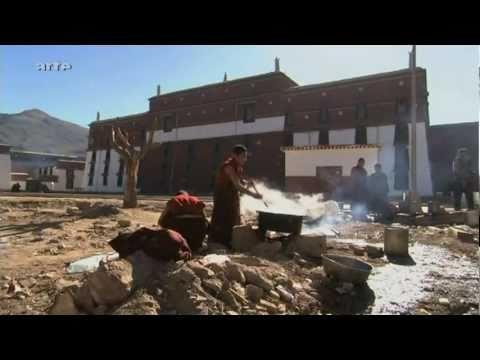 Teeroute 5b – Auf dem Dach der Welt
