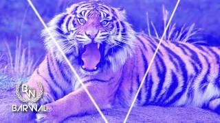 Dawns – Tiger