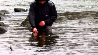 Winter Stocker's (Fishing the Yamaska river)