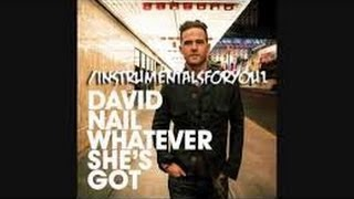 Whatever Shes Got Now On Lyrics David Nail