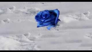 Preludio Mi Menor Op.28, nº 4 - Chopin - (2005)