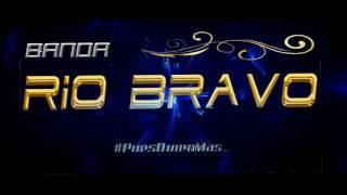 Mi Único Amor - Banda Río Bravo