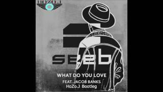 Seeb- What Do You Love (HoZo.J VIP Remix)