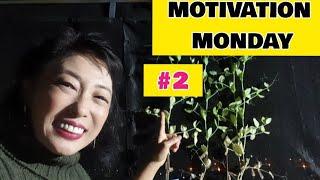 [Quarentena] MOTIVAÇÃO de Segunda-feira #2 (FOCO)