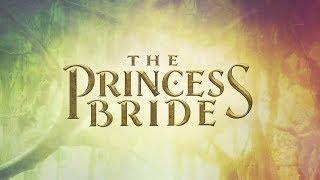 The Princess Bride Theme 30th Anniversary