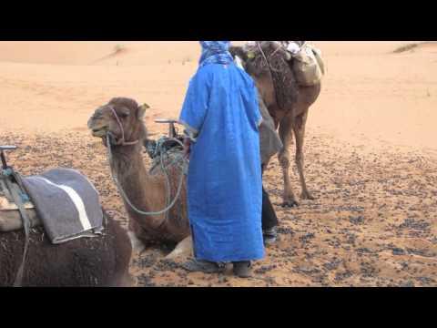 Morocco Travel, March 2012.mov