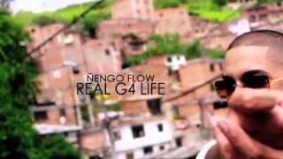Ñengo flow  alucinando