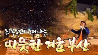특별한 실내 공간에서 즐겨요~ 따뜻한 겨울 부산으로 최주봉과 함께 떠나봅니다 [테마기행.길 24] #부산 #금강공원 다시보기