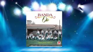 Banda Ole Cuando Seamos Novios