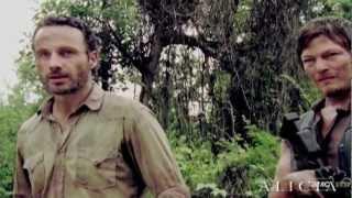 The Walking Dead | Black Flies On The Windowsill