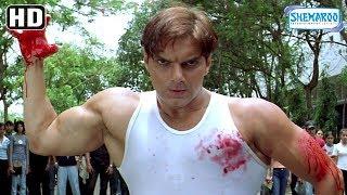 Sohail Khan fight with Rajpal Yadav - Maine Dil Tujhko Diya - Bollywood Action-Romantic Movie width=
