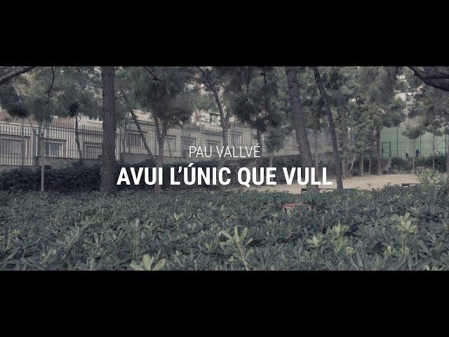 Videoclip oficial de la canción Avui L´ùnic que vull de Pau Vallvé