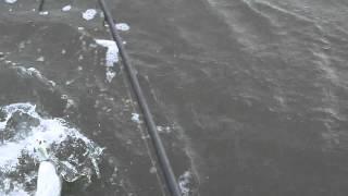 Crazy Striper hits the Squirrel 6 times!!!  Topwater - Napa River