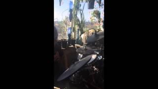 Shu Katt - Linda Pira feat. Dani M (Live Reggaeton Remix)