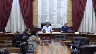 Consiglio Comunale di Marsala del 19/08/2020