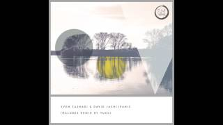 Sven Tasnadi, David Jach - Reckless (Original Mix)