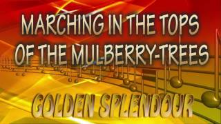 MARCHING IN THE TOPS OF THE MULBERRY TREES - Golden Splendour - (MIGUEL ROSELL)