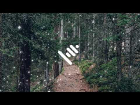 Bro Safari - Follow (Zomboy Remix) [Bass Boosted]