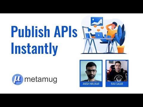 Publish API Instantly with metamug