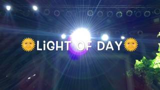 Light of Day   Manoeuvres   Dawin