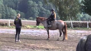 video Laky 6