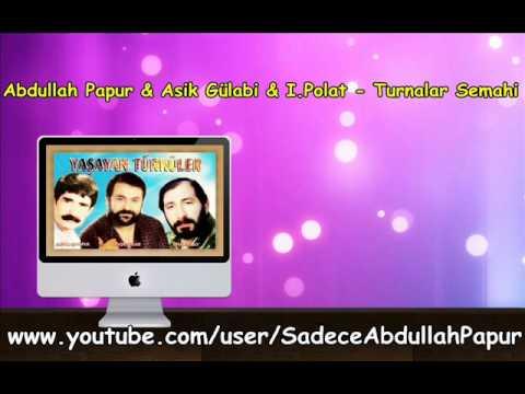 Abdullah Papur & Asik Gülabi & I.Polat - Turnalar Semahi