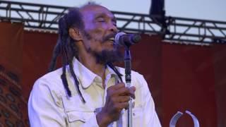 Israel Vibration 'Same Song' Sierra Nevada World Music Festival June 18, 2016