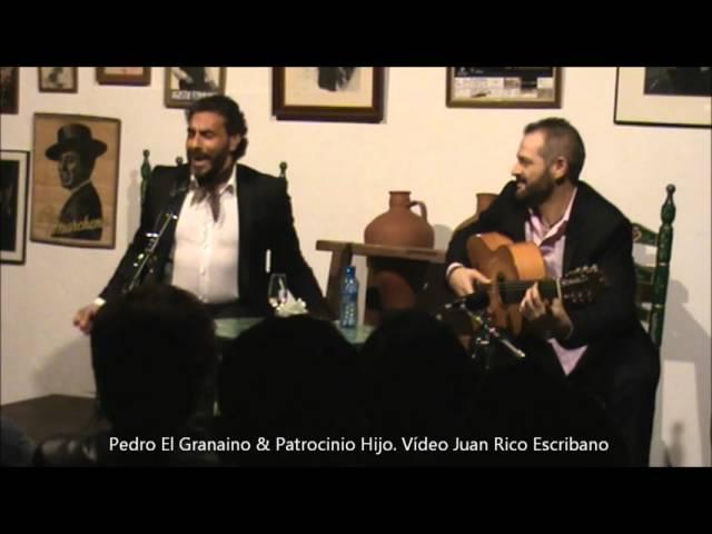 Vídeo de Pedro El Granaíno por bulerías.